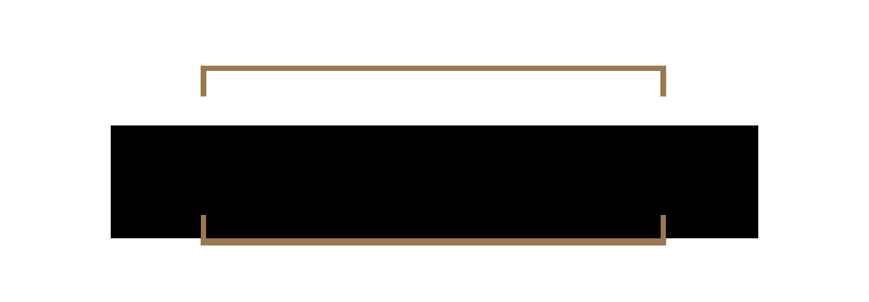 shaadiga logo